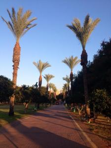 The park in Ra'anana, a Tel Aviv suburb known for its large American immigrant population.