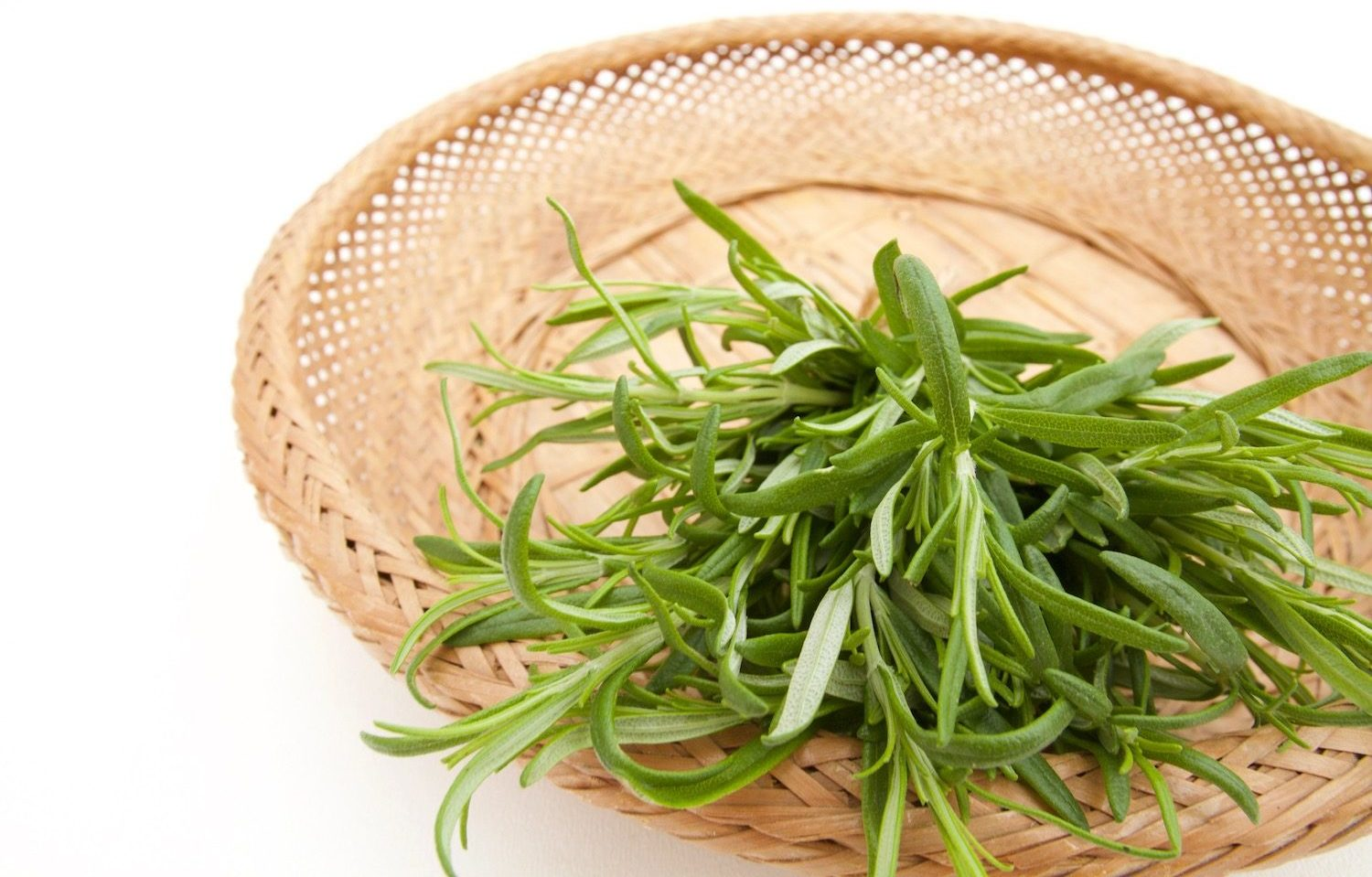 Cut rosemary in basket