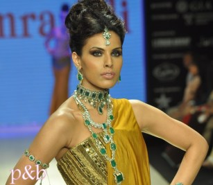 Amrapali at IIJW 2012 - 3 copy