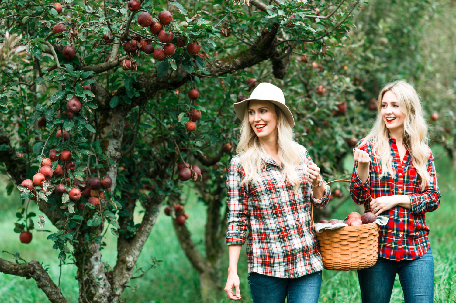 A Day In The Apple Orchard Peachfully Chic