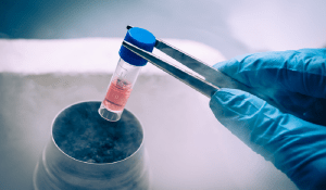 cryopreservation - egg freezing - has boomed over the last decade