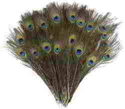 DECORA 100 Pieces Real Natural Peacock Feathers