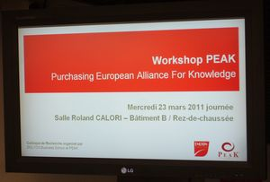 Workshop PEAK - Ecran