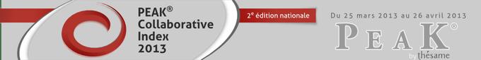 PEAK Collaborative Index 2013