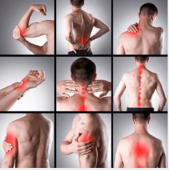 Online EP – 4 Week Injury Specific Programs