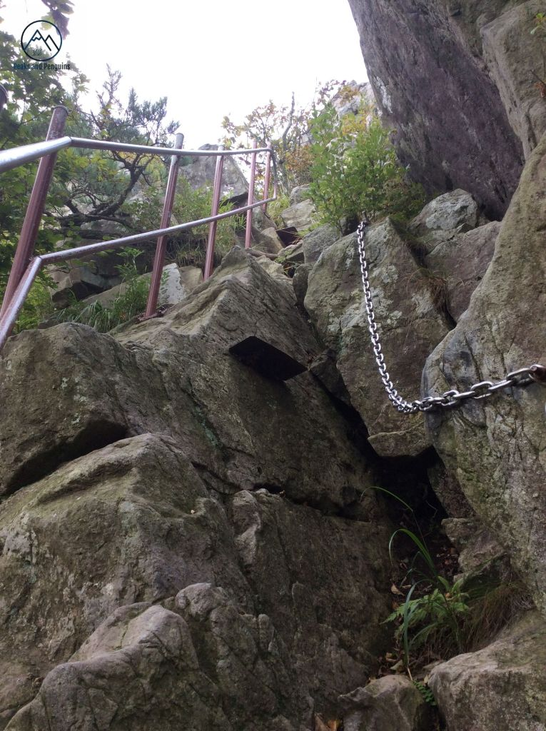 An image of a brown metal railing alongside a silver metal chain. The railing is bolted into the rock, and the chain hangs down over another rock. There is a flat metal slab fixed to the rock in between, meant to serve as a step. The rocks rise straight up, almost vertically, but their surfaces are craggy and good for purchase.