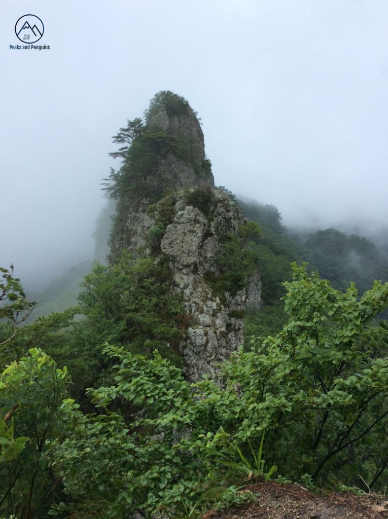 An image taken on one mountain peak of another mountain peak. The peak is stark and stands alone, high above the green of the forest. It's grey and rocky and all sharp angles. Mist carpets the ridge and mountain slopes in the distance.