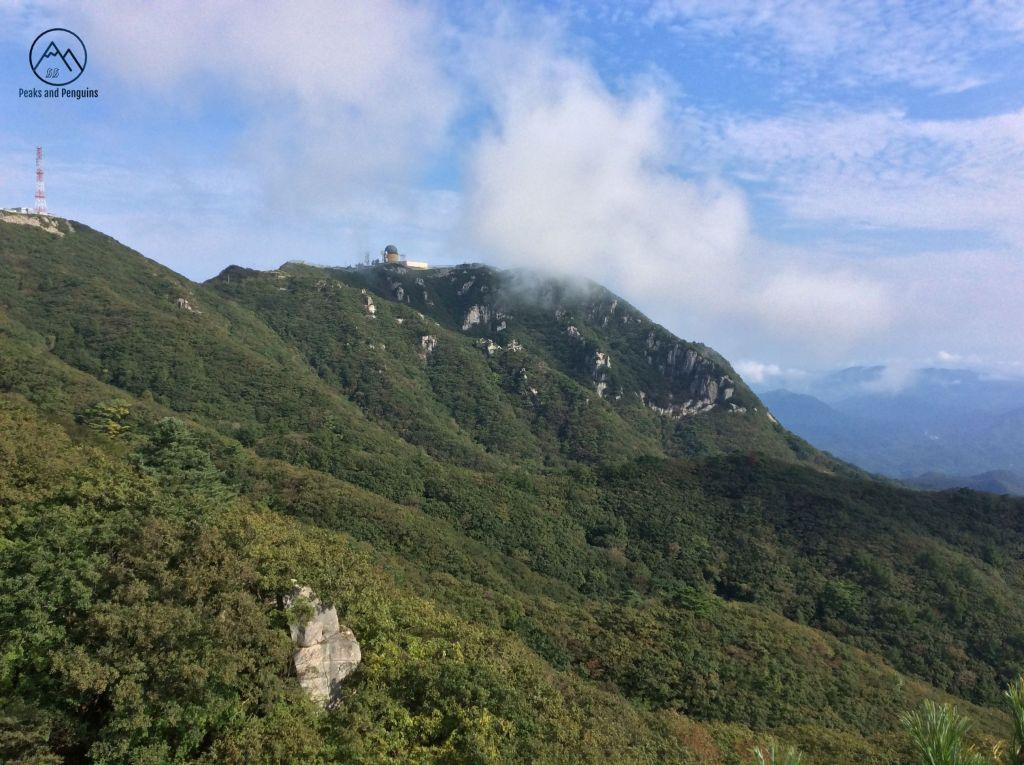 Картинки по запросу Palgongsan Mountain