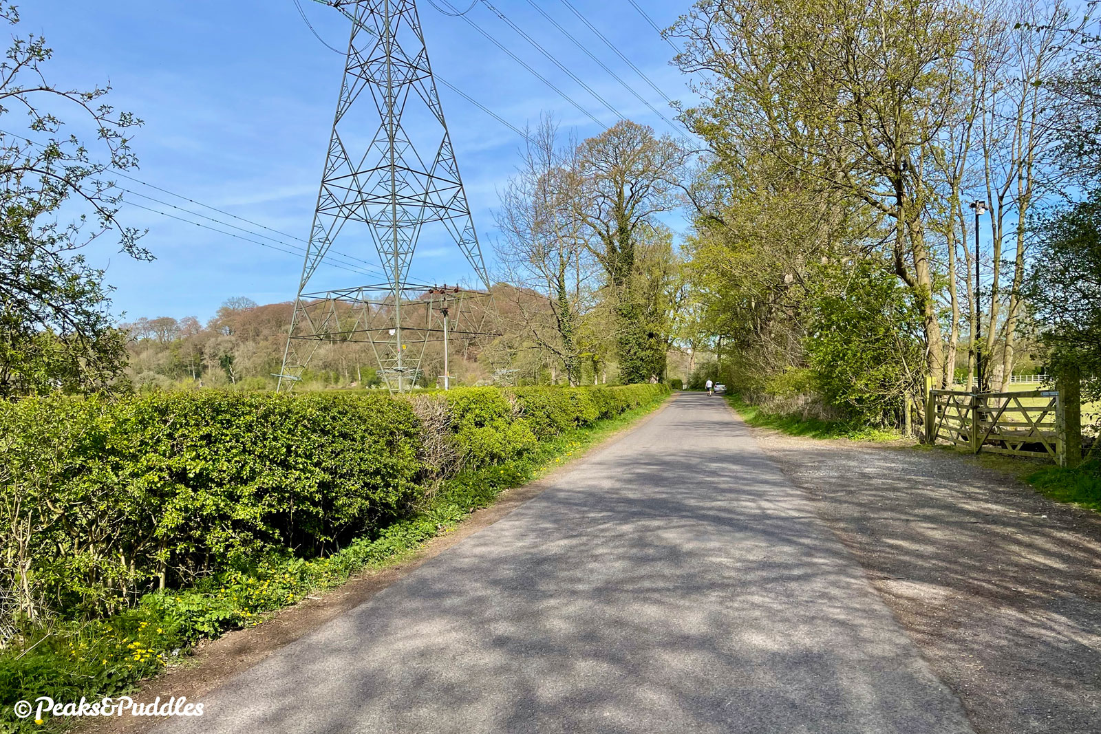 Vale Road towards Chadkirk Chapel is wide and pleasant, busier with dog walkers than vehicles.