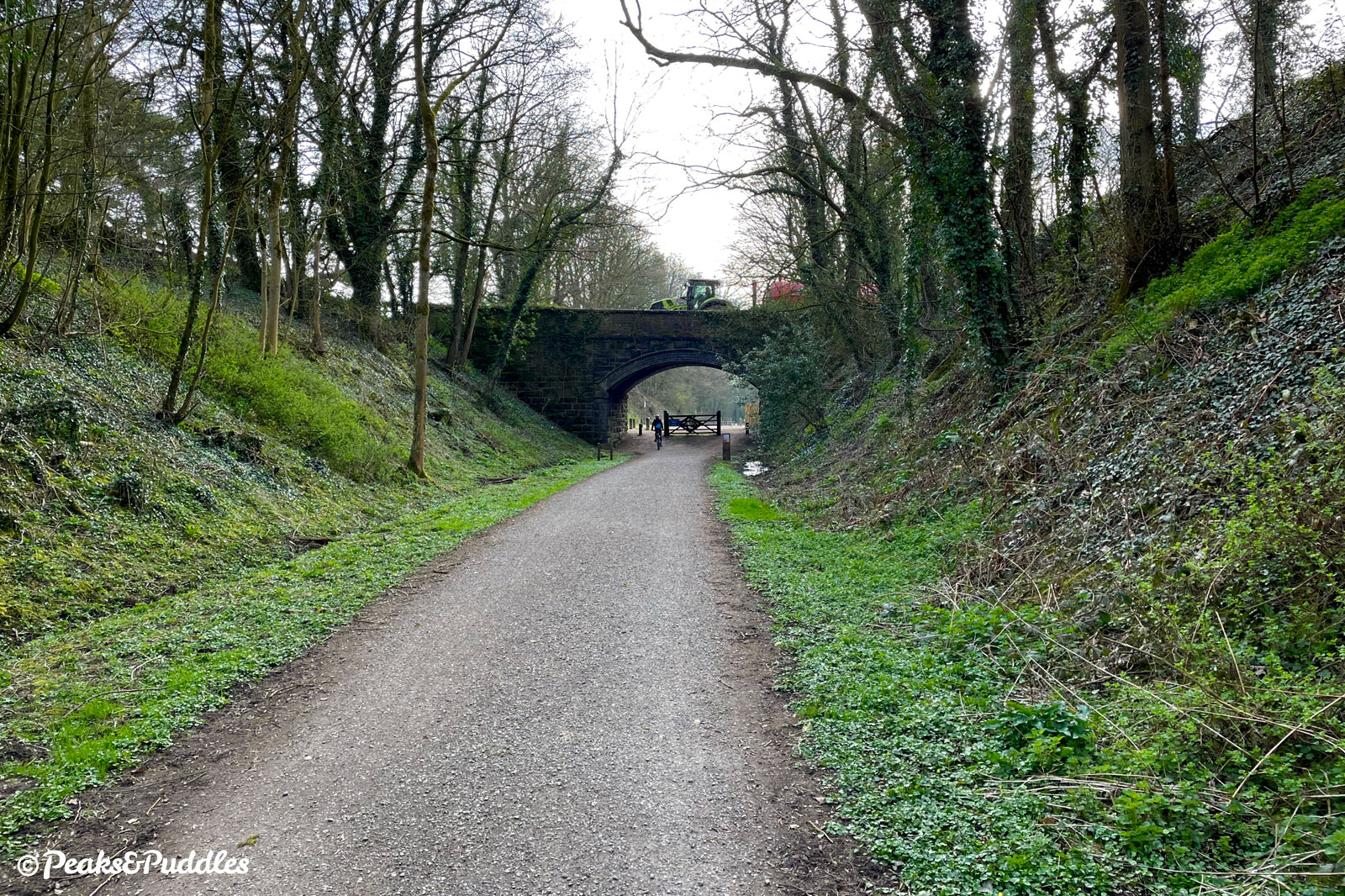 Approaching Tissington station through a damp wooded cutting.