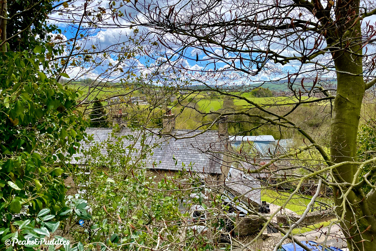 A view through the trees over Birch Vale from Sitch Lane, Thornsett.