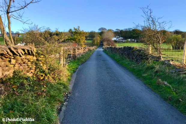 The challenging climb of Whetmorhurst Lane opens out ahead; it feels endless, but it does definitely have an end.