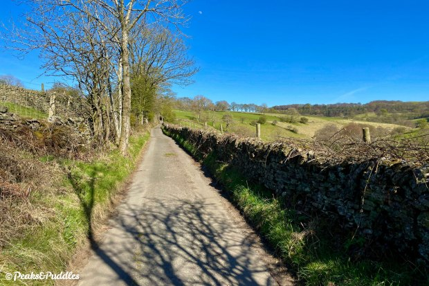 The long single track route through Malcoff is a joyously undiscovered corner of the High Peak, butting right up against the edge of the Kinder range with views of South Head and Roych Clough.