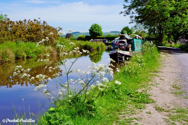 Every turn of the Upper Peak Forest Canal provides a new scenic delight.