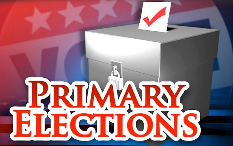 primary elections