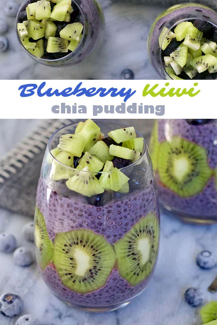 blueberry kiwi chia pudding