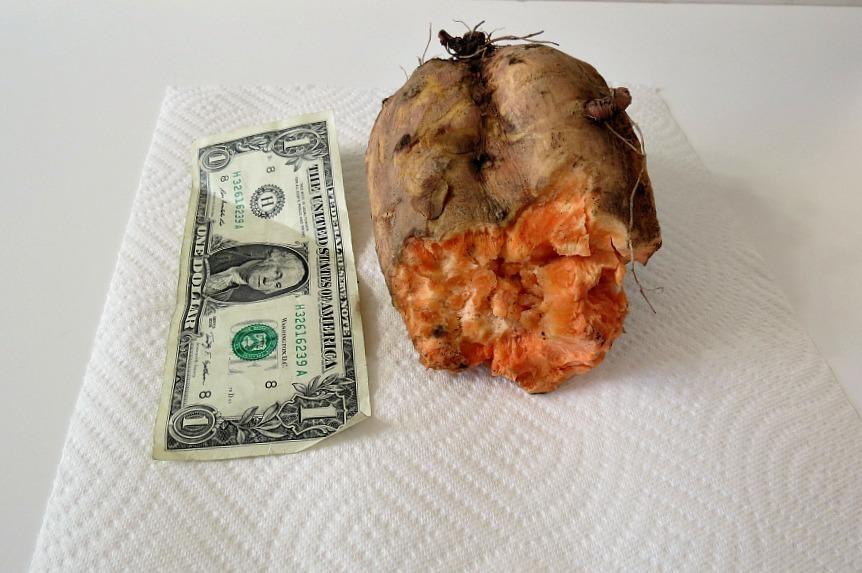 sweet potato 002