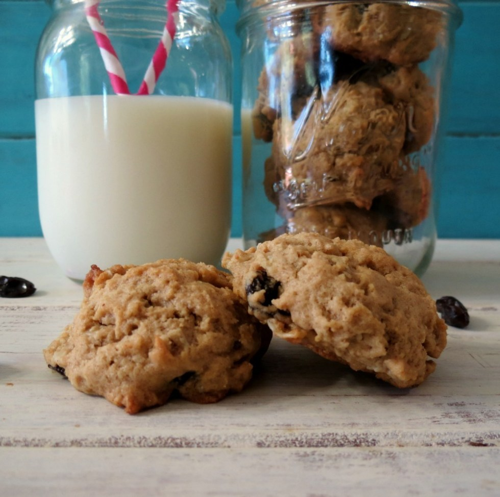 Peanut Butter Oatmeal Raisin Cookies