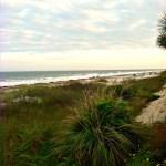 I'm At The Beach