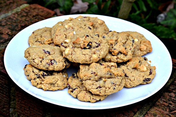 OATMEAL, CRANBERRY AND CHOCOLATE COOKIES