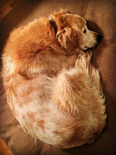 sleepysul