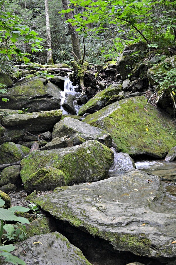 Profile Trail Waterfalls