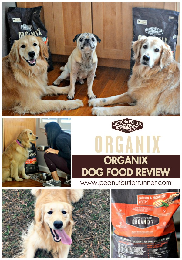 Learning lessons from my dogs about finding joy in the everyday small moments along with a review of ORGANIX organic dog food.