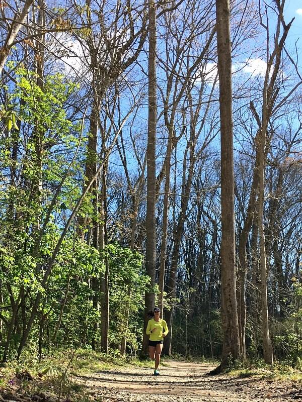 Charlotte Greenway Running