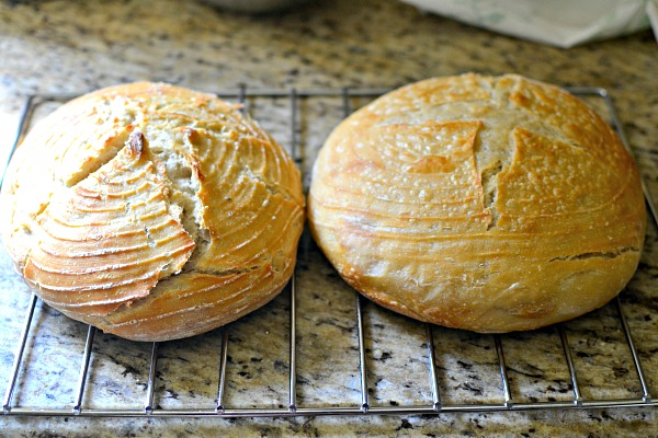 sourdough rounds