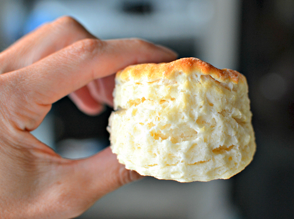 Homemade buttermilk biscuit