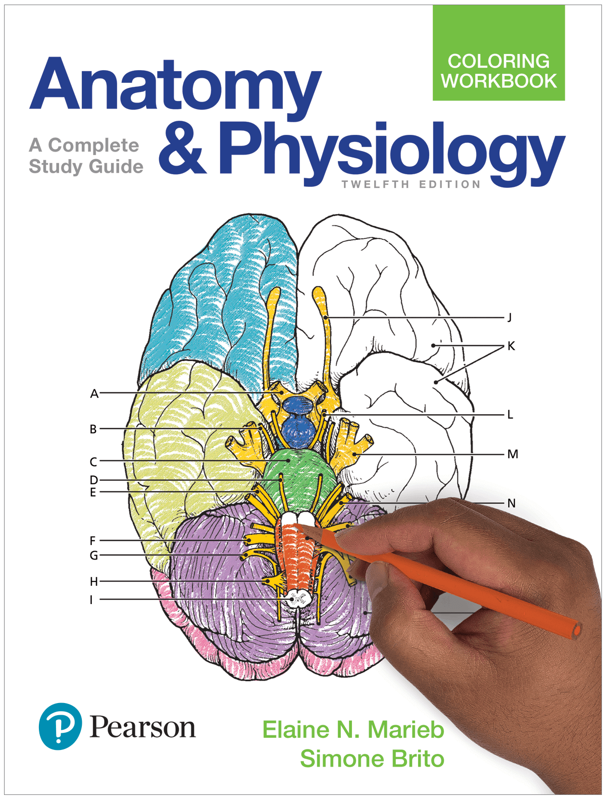 Physiaology And Anatomy