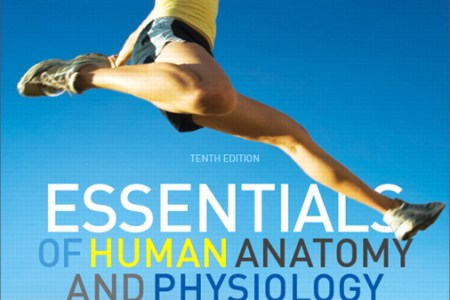 interior human anatomy and physiology th edition » Full HD Pictures ...