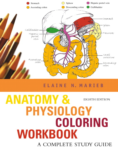 Marieb Anatomy Amp Physiology Coloring Workbook A Complete