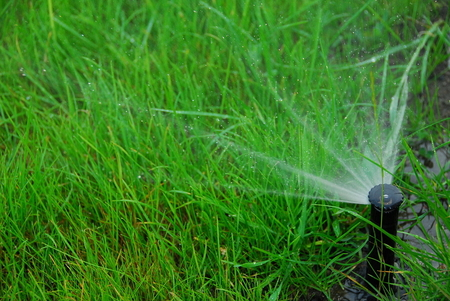 picture of a grass lawn being irrigated.