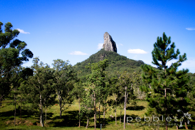 A guide to the climbing the Glass House Mountains ...