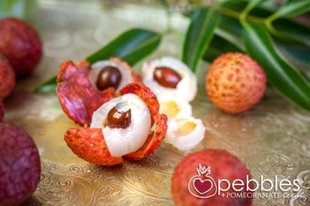 lychee-divine-farm-visit