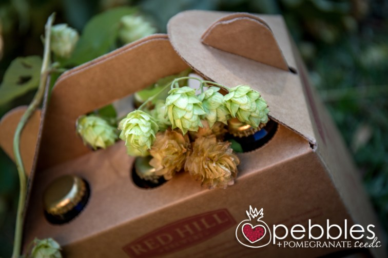 red-hill-brewery-hop-picking23