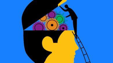 Photo of UEMA recebe inscrições para curso de Psicologia Ocupacional EAD