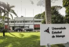 Foto de UEM abre processo seletivo com 90 vagas para professores