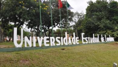 Foto de UEL recebe inscrições para Especialização em Docência na Educação Superior