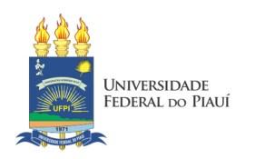 processo seletivo UFPI