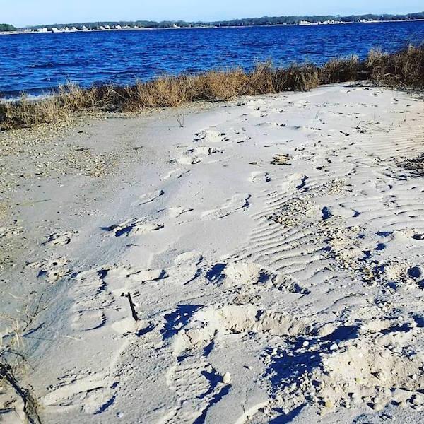 Flanders Bay, 9 a.m., Jan. 2