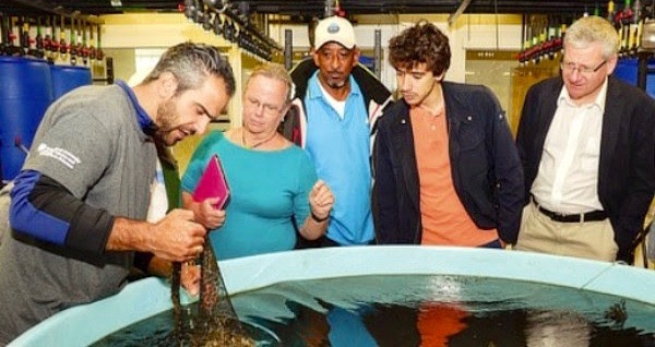 Dr. Konstantine Rountos shows representatives of Palau, The Bahamas, Italy, and Poland a bag of 'spat on shell' at the marine laboratory. | ShiRP courtesy photo