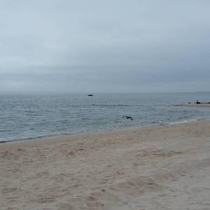 Feb. 23, 1 p.m., New Suffolk Beach