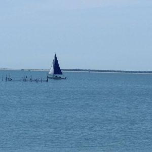 June 15, 2 p.m., Short Beach, Sag Harbor