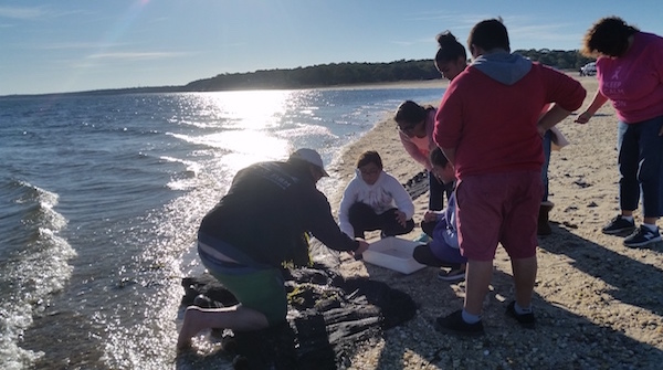 Peconic Baykeeper Sean O'Neill with Hampton Bays Middle School students at Squires Pond Oct. 21.