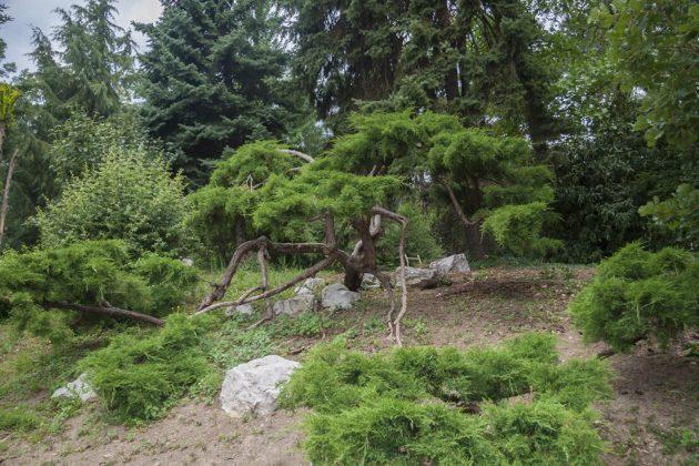 Botanični vrt Univerze Pécs