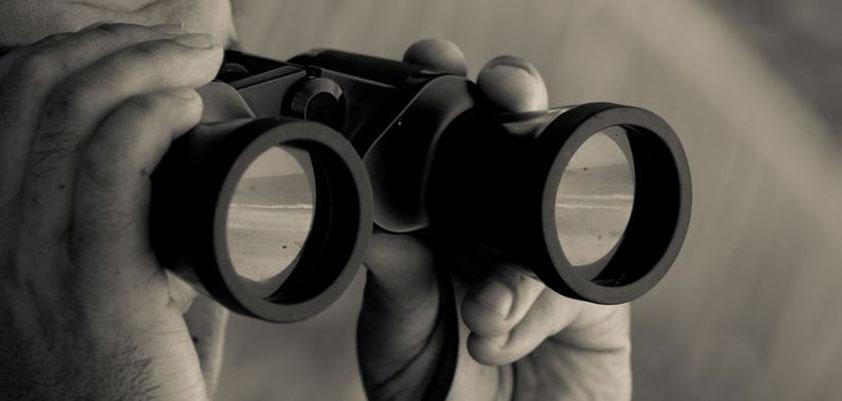 3 key topics binoculars munster watching
