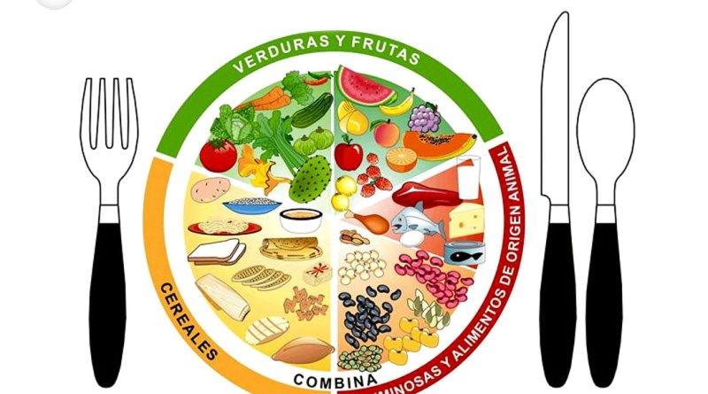 Resultado de imagen de plato saludable