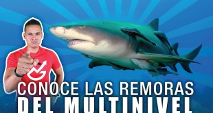 las remoras multinivel